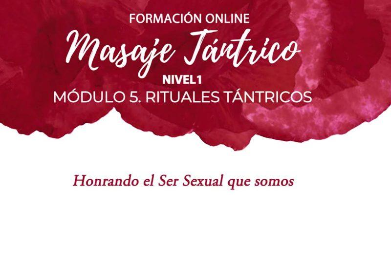 FMT online: Módulo 5